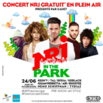 V2-affiche-nrj-in-the-park-futuroscope.jpg